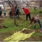 Photo of Residents of Cahul helping build the central community park envisioned by Nicolae Dandis.